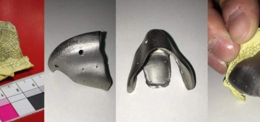 3D printed beak