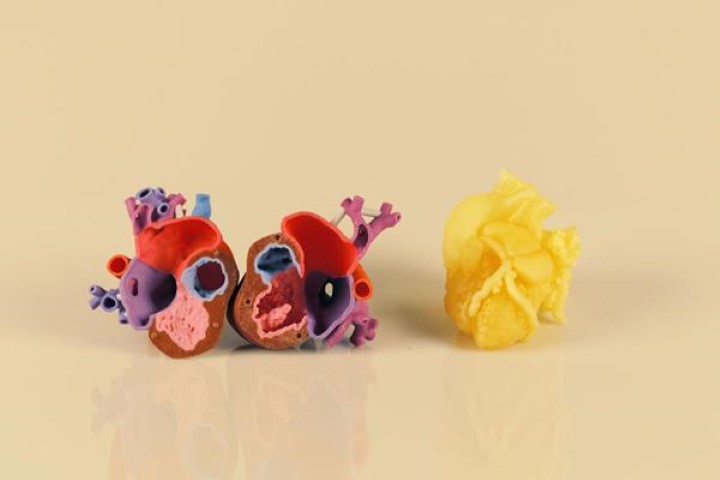 3D Systems D2P: medische 3D data converteren naar digitaal 3D model