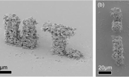Twentse onderzoekers 3D printen micro mechanische structuur in goud