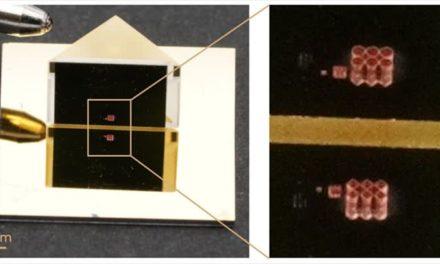 Cytosurge 3D print Escher vormen op microschaal