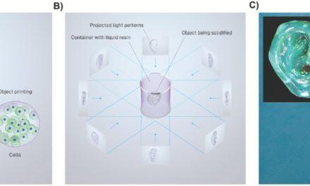 UMC ontwikkelt Volumetric Bioprinting voor 3D printen organen