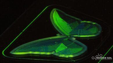 Photo of TU/e boekt doorbraak 3D printen met vloeibaar kristalinkt